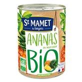 Ananas Bio St Mamet x1