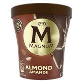 Magnum Pot de glace Magnum Amandes - 297g