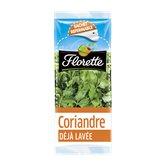 Florette Coriandre Florette 11g