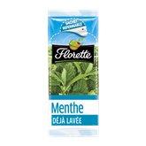 Florette Menthe Florette 11g